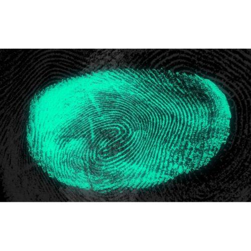 UV fényben világító tolvajfogó pigment por, 20 g